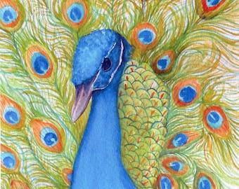 Impression de paon de mon aquarelle peinture originale, oiseau, peinture, paon, Art mural, 5 x 7