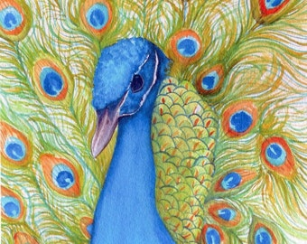 Peacock Print from my original painting watercolor,  Bird painting, Peacock Wall Art, 5 x 7