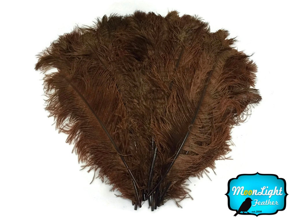 Wedding centerpiece feathers lb quot brown large