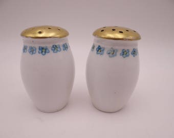 1880s Hand Painted Vintage Bavarian ZSC Zeh Scherzer & Co Blue Flower Salt and Pepper Shakers  - Charming