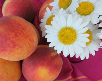 Peaches and Shasta Daisies - Peach Season - Fruit Still Life - Kitchen Wall Decor - Original Color Photograph by Suzanne MacCrone Rogers
