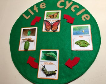 Montessori Life Cycle Card-to-Object Matching Activity--Choose from Butterfly, Ladybug, Ant, Honeybee, Bean Plant, Chicken, Frog, Turtle