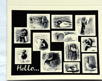 Sketched Bird Collage - Notecards