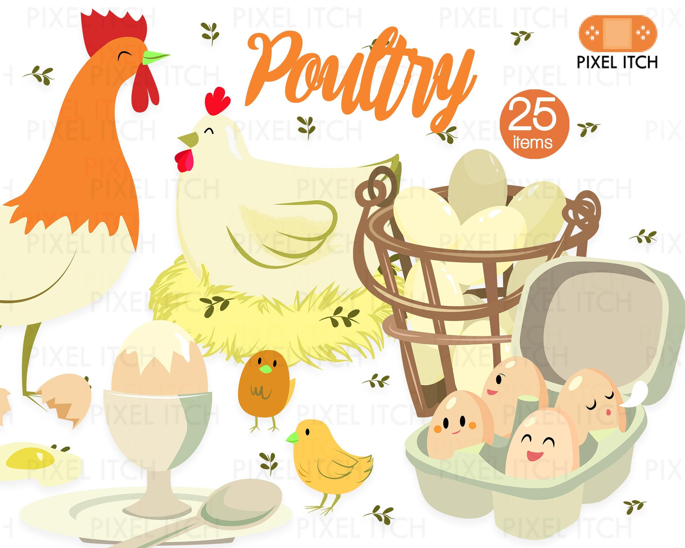 Poultry Clipart Farm Clipart Farm Produce Chicken Clipart