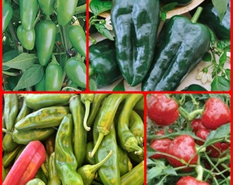 Best Heirloom Hot Pepper Seed Collection Non-GMO Best Selling Open Pollinated Gardening