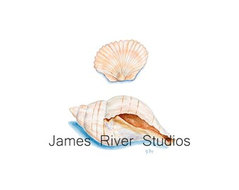 Shells Art Seashells Art Seashells Painting Seashells Print. Seashells Watercolor Painting Ocean Art Ocean Decor Coastal Art Beach Art Print