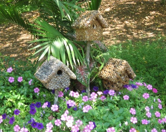 Small birdhouse for black capped chickadee; small entry 1.25'; proven nesting box; flower garden enhancement; stunningly beautiful finish.