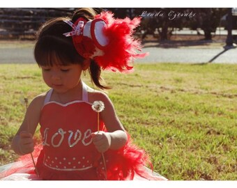 feather dress, costume, pageant dress, corset, top hat, mini hat, valentines day, couture, girls feather dress, feather tutu, valentines