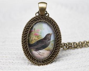 Blackbird Pendant, Blackbird Necklace, Bird Necklace, Bird Pendant, Blackbird, Black Bird, Oval, Glass Dome Pendant, Glass Dome Necklace