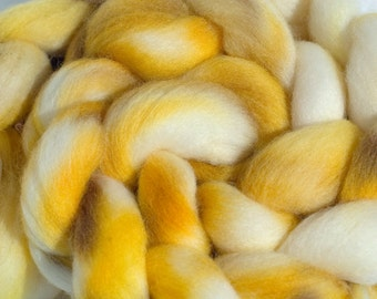 Hand Dyed Roving (Combed Top) Falkland Wool, Spinning Fiber, Helianthus