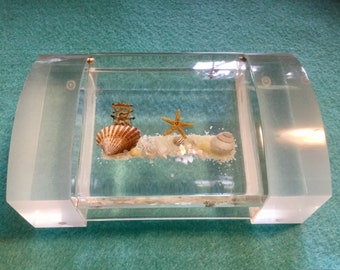 Lucite Trinket Box Seashell Lucite Box with Lid Seashell Lucite Lidded Box Shell Box Clear Acrylic Seashell Box Vintage 1950's