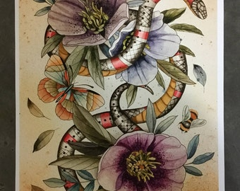 Snake with hellebore and bugs