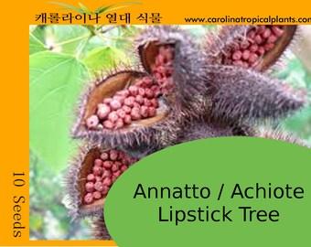 Achiote / Annatto seeds - 10 Seeds