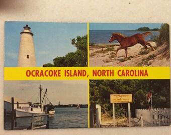 Vintage Postcard Ocracoke Island North Carolina Wild Pony Ocracoke Lighthouse