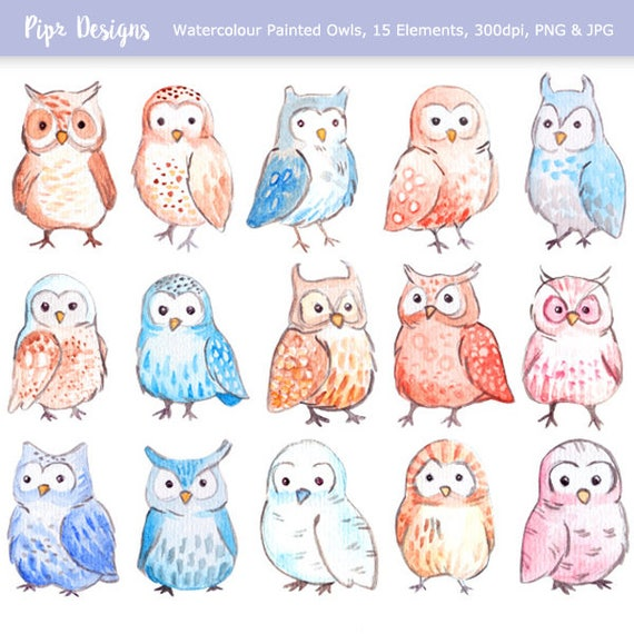 Cute Watercolor Owls clipart. 15 royalty free clip art images
