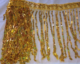 2 yards only 9.99 of Holographic Sequin Fringe