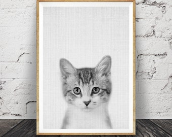 Kitten Print, Nursery Baby Animal Wall Art, Large Poster, Digital Download, Modern Minimalist Decor, Cat Photo, Cute Kitten, Black and White