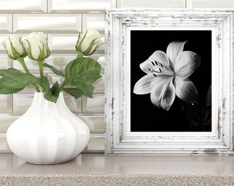 black and white flower photography, lily wall art, floral print, large poster printable art, instant digital download, printable artwork