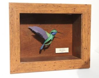 The Green Violetear Hummingbird  Female (Colibri thalassinus)
