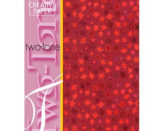 4 sheets A4 2 tone star rouge_JJ86120