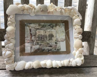 An assortment of unique white sea shells adorn this 8 x 10 picture frame.