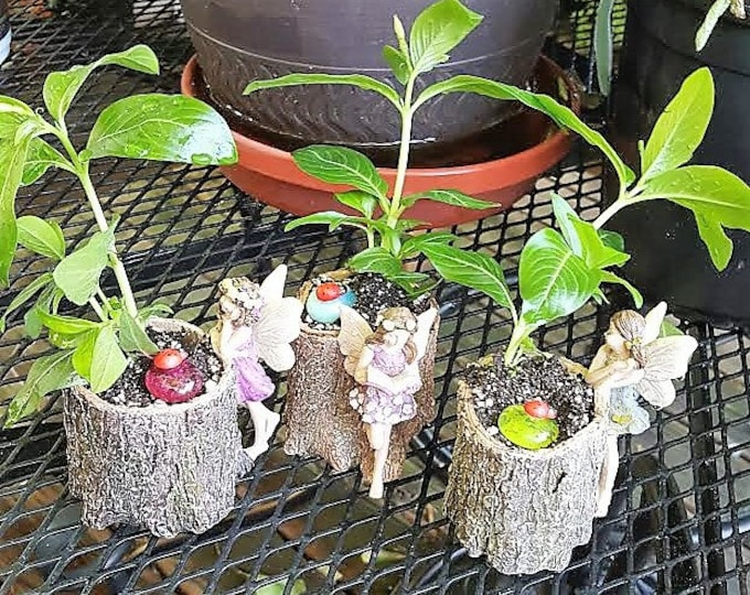 Mini Fairy Stump Planter (Gray Blue, Purple and Pink) PLANTS NOT INCLUDED