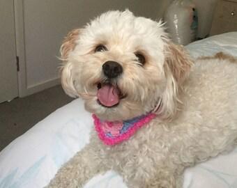 Floral Crochet Dog Scarf