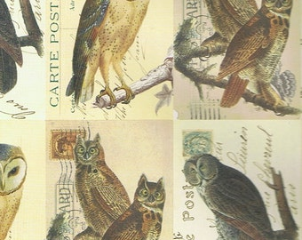 Paper ROSSI - OWLS - made in Italy