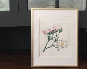 Unframed 8x10inch white rose gouache painting