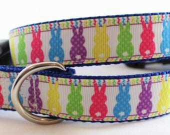 "Some Bunny Loves Summer 1"" Dog Collar"