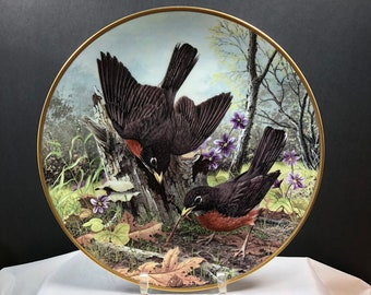 "National Audubon Society Robin ""Hunting for Food"" Collector Plate 1983"