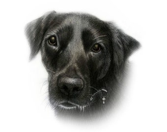 Custom DIGITAL Pet Portrait. Gift. Custom Dog Portrait. Custom Portrait. Dog poster. Dog Lover. Dog Art. Pet portrait. Custom pet print.