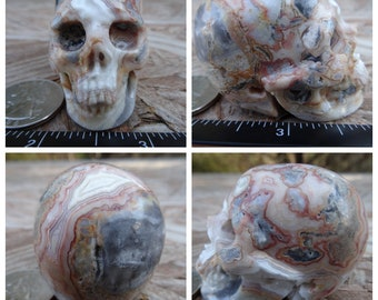 "1.96"" 3.2oz 91.1g Crazy Lace Agate Skull Realistic Crystal Healing Mystic Reiki Wicca Large 2 inch Yellow SK2667"