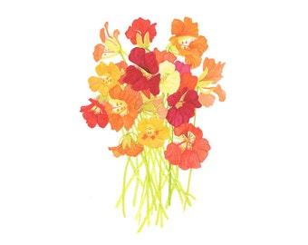Watercolor Nasturtium Flowers Bouquet / Autumn Colors Botanical Fine Art Floral Print Contemporary Realistic / 4x6 5x7 8x10 / Gifts Under 30