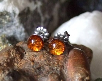 Baltic Amber 6mm Ear Studs Stud Earings Titanium Posts and Clutches Hypo Allergenic Made in Newfoundland ENERGY No Bugs