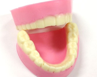 Chocolate Dentures, White Chocolate, Gift Boxed - Gag Gift, Joke Chocolates, Over the Hill Gift, Dentistry