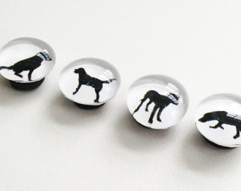 Good Dog- magnets/push pins