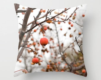 Red Cushion Cover, Apple Decorative Pillow Case, Rustic Man Cave Sofa Decor, Cabin Couch Accent, Autumn Cottage Chair, Birthday Gift for Dad