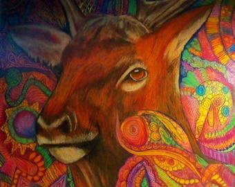 original arte dibujo color lápiz zentangle elk wapiti pared decoración animal
