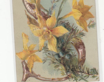 "Beautiful 1909 Alphaet Letter Daffodils Postcard Letter ""S"", Letter Is Grained Wood"