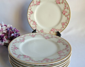 6 Bridal Wreath Bread and Butter Plates Austria HUB  Fine Porcelain Bridal Rose 1920's