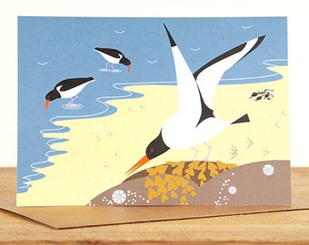 Oystercatchers by the Sea Greetings Card