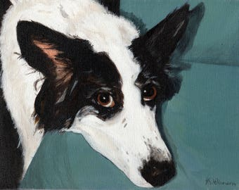 Border collie - Greeting card