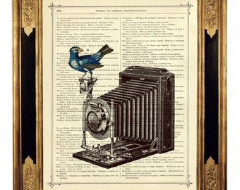 Photo Camera Dictionary Art Bird Poster Steampunk - Vintage Victorian Book Page Art Print