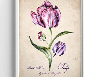 Nursery decor, Nursery print, Botanical print, Tulip print, Tulip art, Vintage tulip, Nature illustration, Kitchen print, Tulip poster