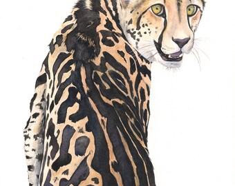 Cheetah Watercolor Painting- animal art- print of watercolor painting A4 largest print