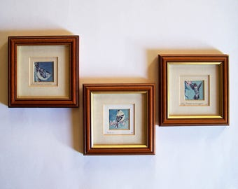 "Mini Bird Prints - Ruby Throated Hummingbird, Goldfinch and White Breasted Nuthatch - ""America in Miniature"" Series"