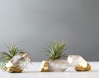 Air Plant Gold Dipped Quartz Crystal, Desk Accessories, Best Friend Gift, Boho Decor, Dorm Decor Air Plant, Air Planter, Air Plant Terrarium