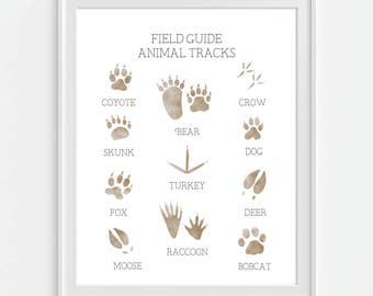 Animal Tracks Art Print, Boys Wall Art, Woodland Nursery Animal, Field Guide, Boys Room Decor, Woodland Decor, Hunting Guide, Wildlife