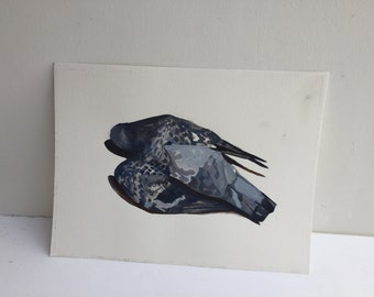 Pigeon original painting in gouache